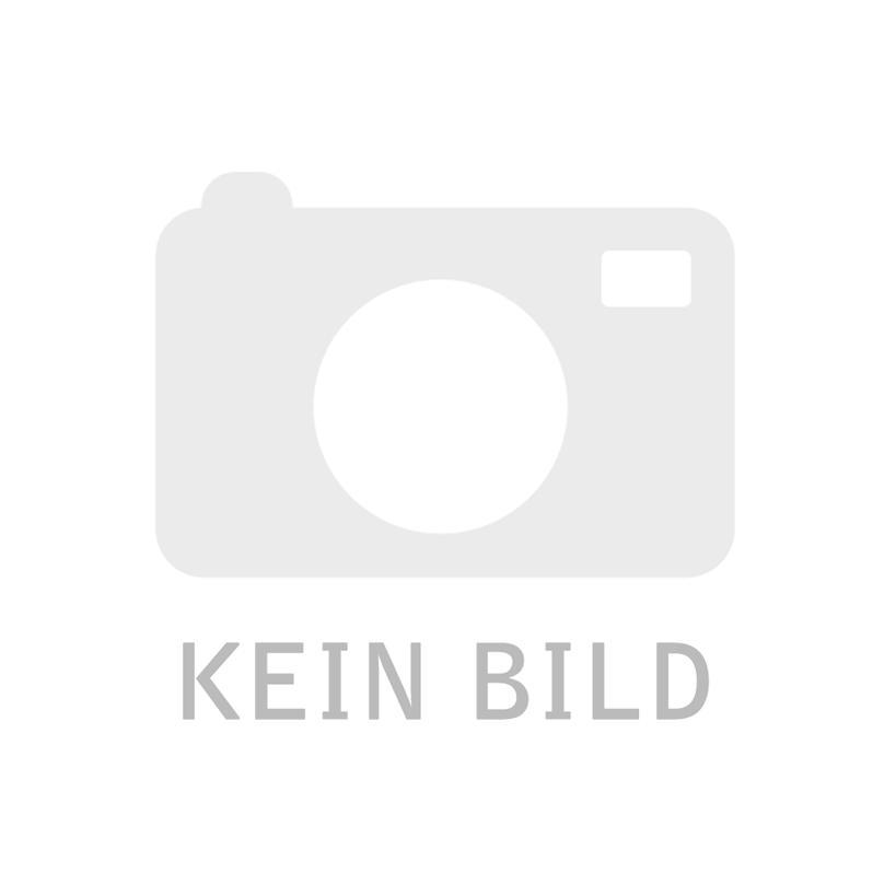 Bertrams ALVA ALEA Rauchrohr verzinkt 120/1000mm  021410