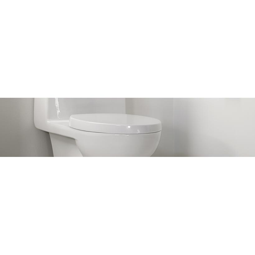 Toiletten Austausch mit Online-Terminbuchung letten-Austausch mit Online-Terminbuchung